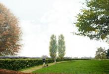 Landschap als leidraad [NL]